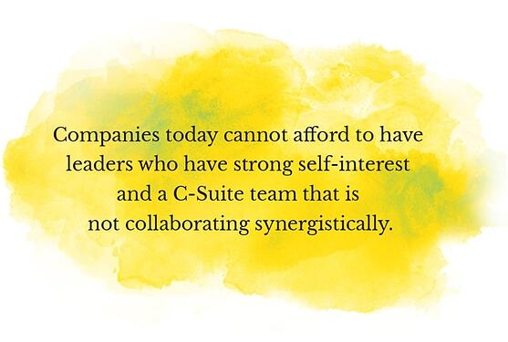 Why are senior leadership teams lacking in cohesiveness and effectiveness?